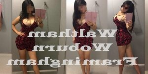 Fathia call girl in Vail AZ & massage parlor